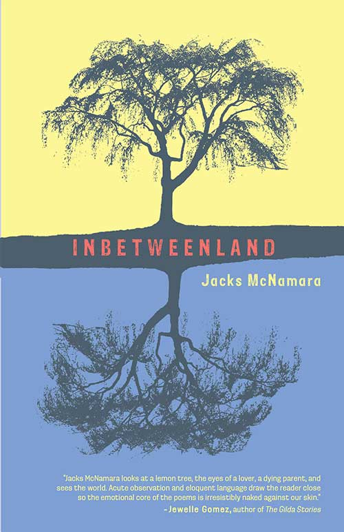 Cover of Inbetweenland Book